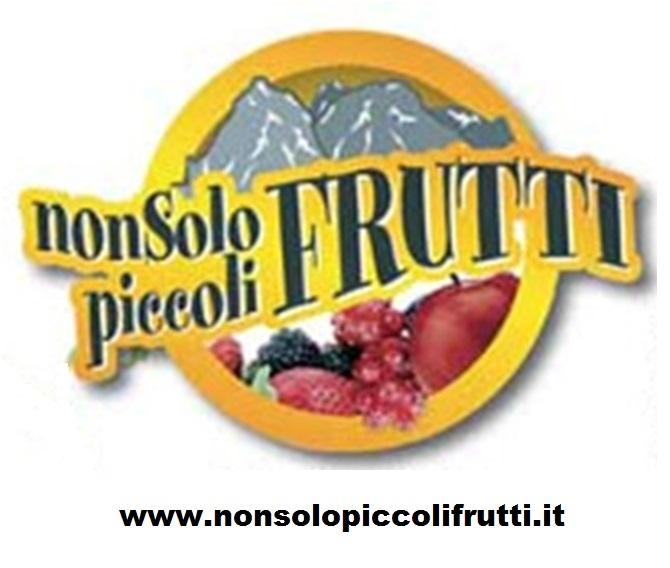 Non-solo-piccoli-frutti