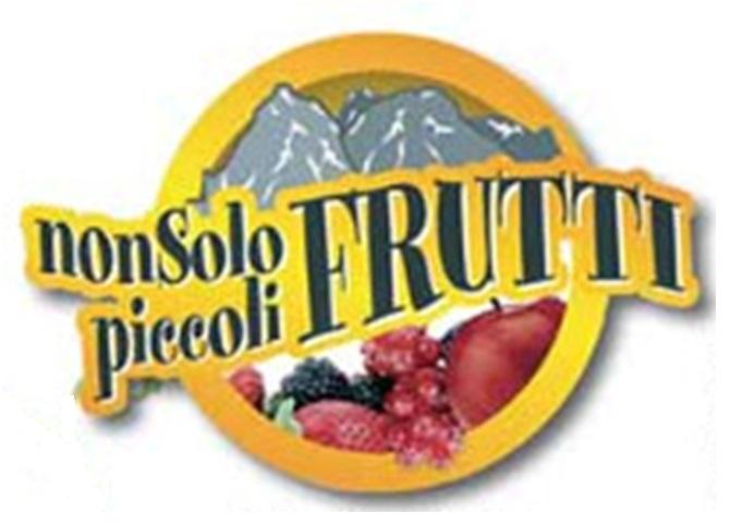Logo di Non solo piccoli frutti